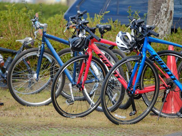 【終了しました】地元の専門ガイド同行!霞ヶ浦・桜めぐりと千代田のイチゴ狩りサイクリングツアー
