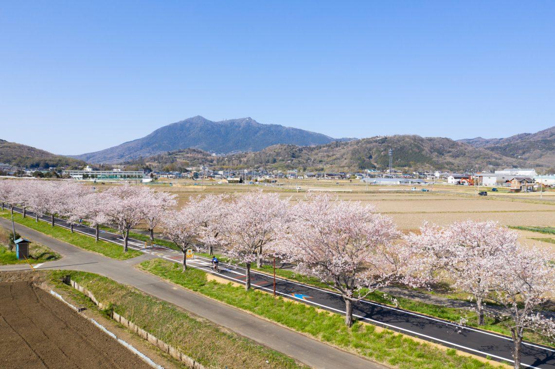 つくば霞ヶ浦りんりんロード、筑波山