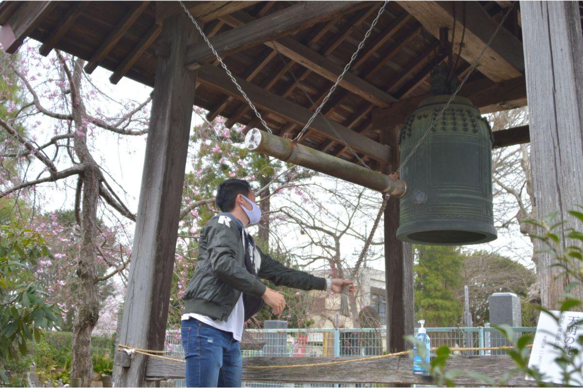 守谷市、清瀧寺、桜