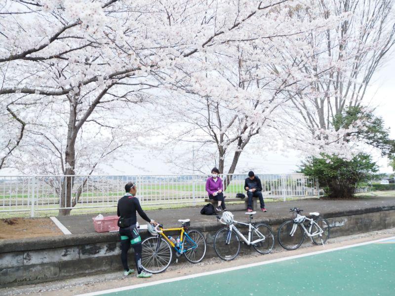 サイクリング、りんりんロード